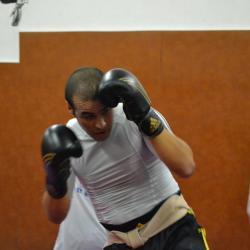 boxe 1016