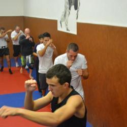 boxe 589